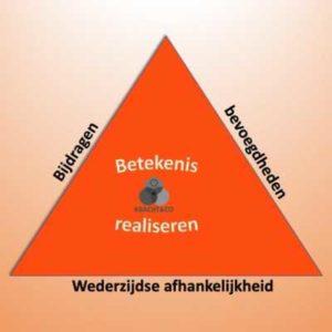 Driehoek betekenis realiseren